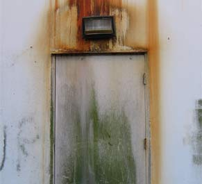 Ways to identify mould problems in the house